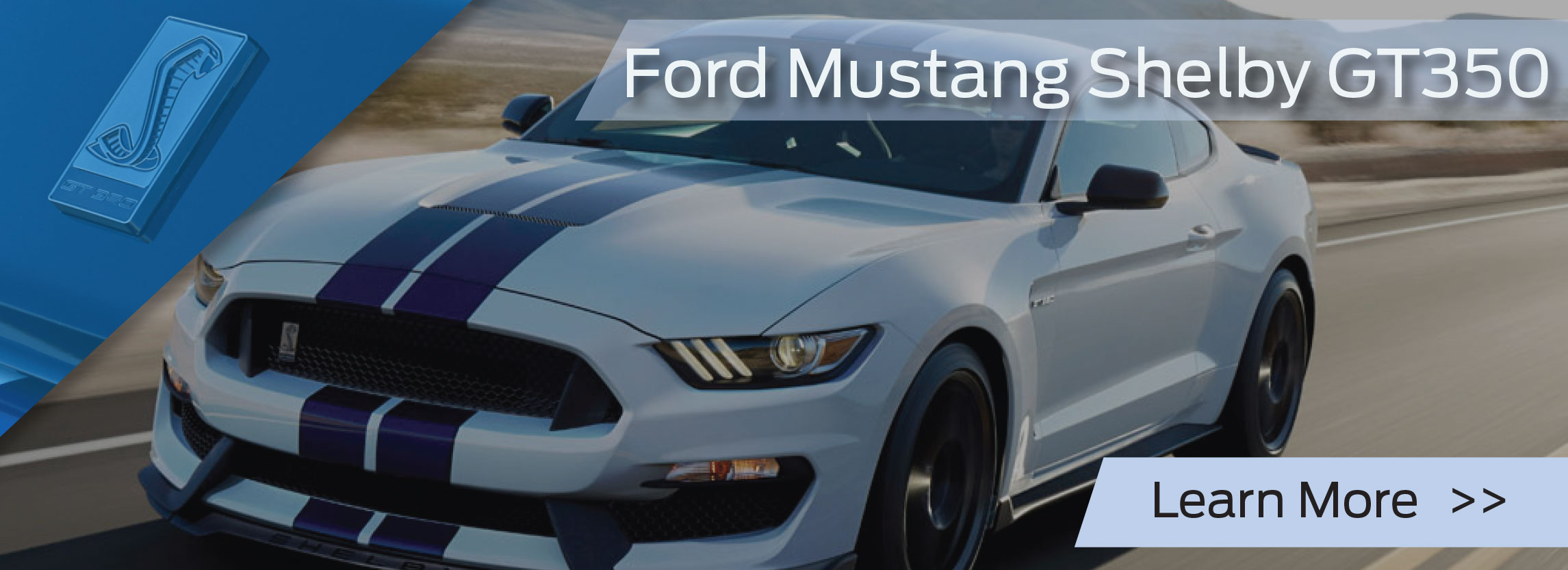 specialty ford mustang models ford mustang shelby gt350 high. Cars Review. Best American Auto & Cars Review