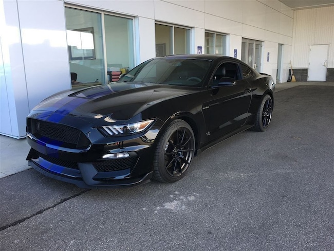 Used 2016 Ford Mustang Shelby GT350 Coupe  in Nisku