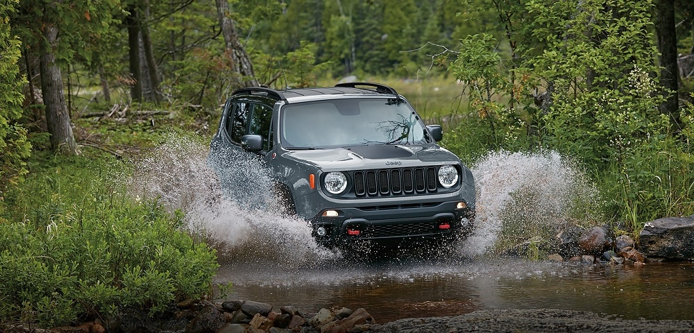 2017 Jeep Renegade in Johnson City