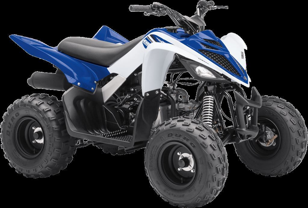 New 2018 yamaha raptor 90 for sale brant on for Used yamaha raptor 90 for sale