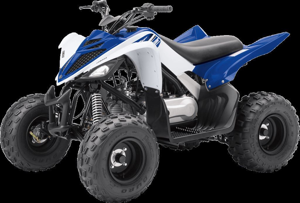 new 2018 yamaha raptor 90 for sale brant on. Black Bedroom Furniture Sets. Home Design Ideas