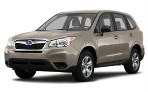 2014 Subaru Forester Color Burnished Bronze Metallic