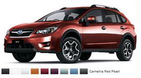 Les couleurs de la XV Fdd381670a0a006500905272f9864e90