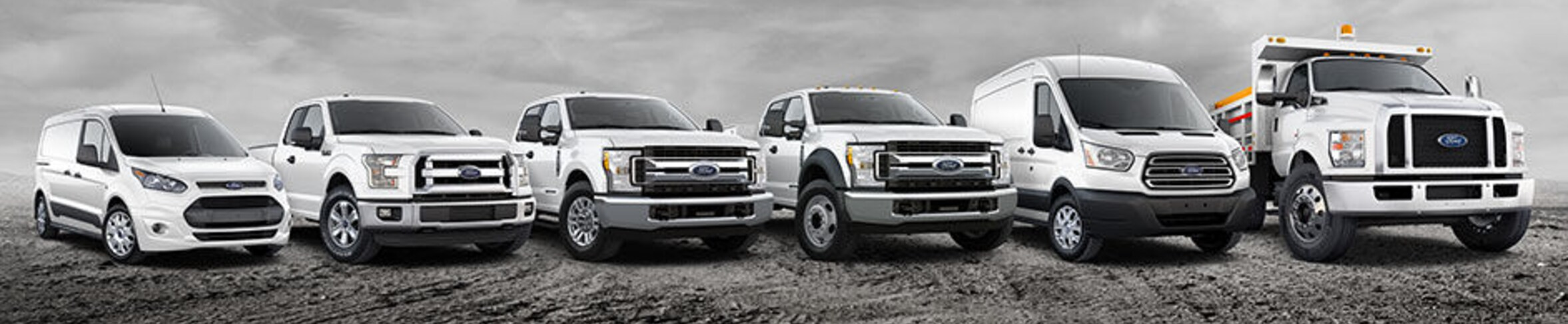 Commercial Ford Vehicles