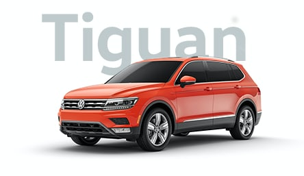 Tiguan_Jelly_T3LP.png