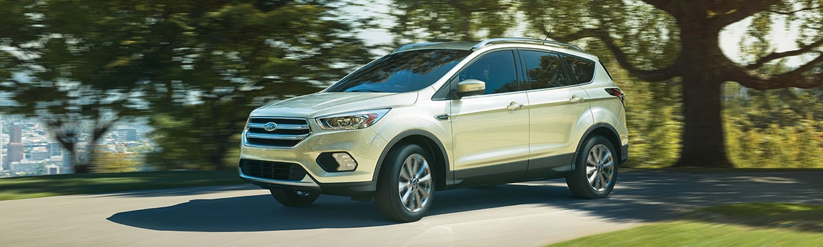 2017 Ford Escape Titanmium in the park