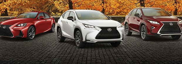 Limited-time offers, Limitless Possibilities.