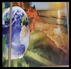 Globe And Nature Photo, Toyota Dealers, Michigan - Dunning Toyota