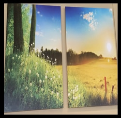 Nature Artwork Photo, Toyota Dealers, Michigan - Dunning Toyota