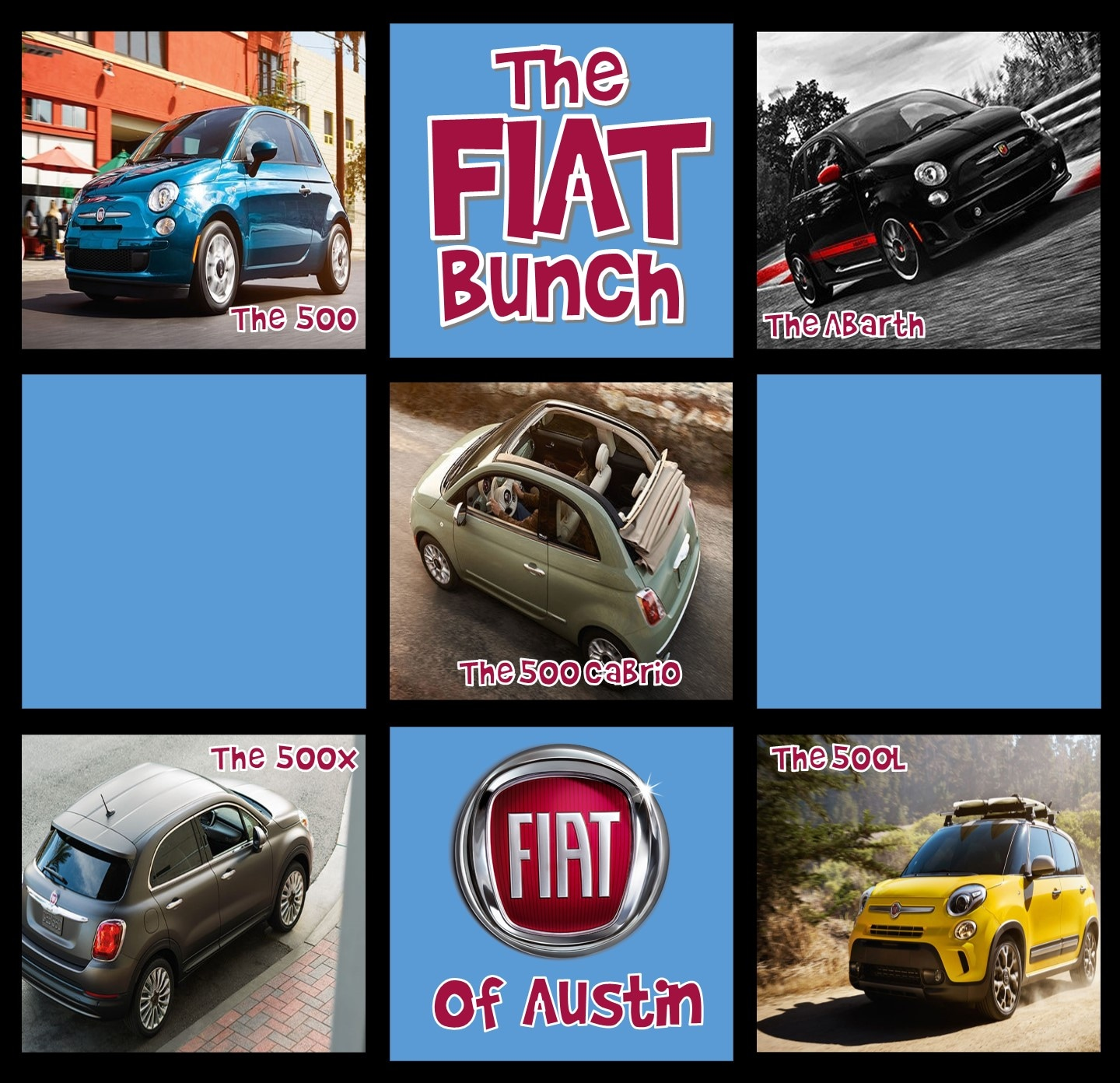 Meet The FIAT Bunch