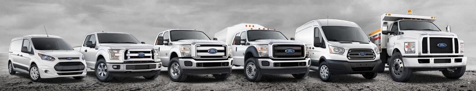 2016 Ford Fleet Commercial Trucks