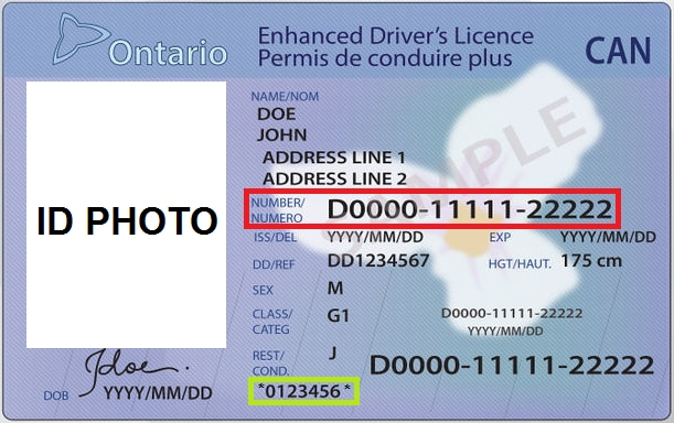 Ontario Driver S License Template Psd Food