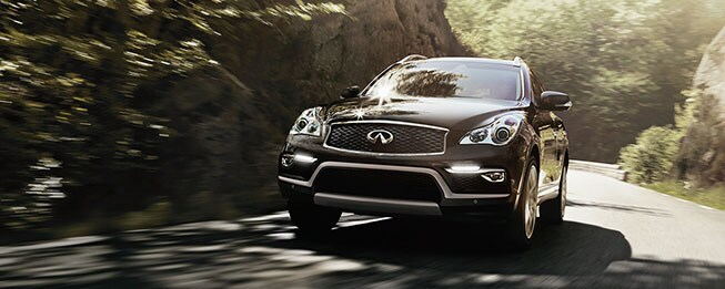 New 2017 Infiniti QX50 for sale in Hardeeville SC
