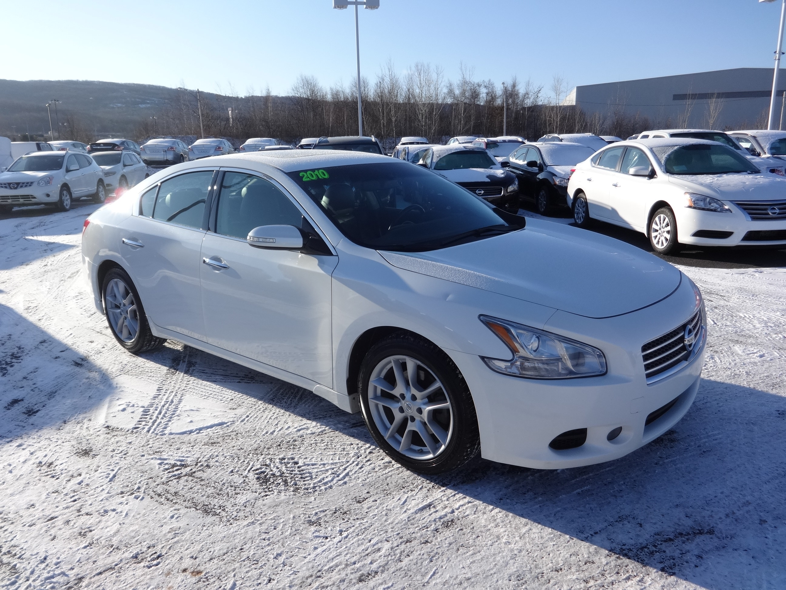 used 2010 nissan maxima for sale wilkes barre pa. Black Bedroom Furniture Sets. Home Design Ideas