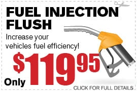 Fuel Injection Flush
