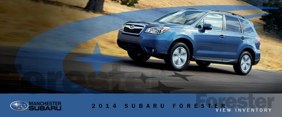 new consumer reports names the 2014 forester their top scoring small