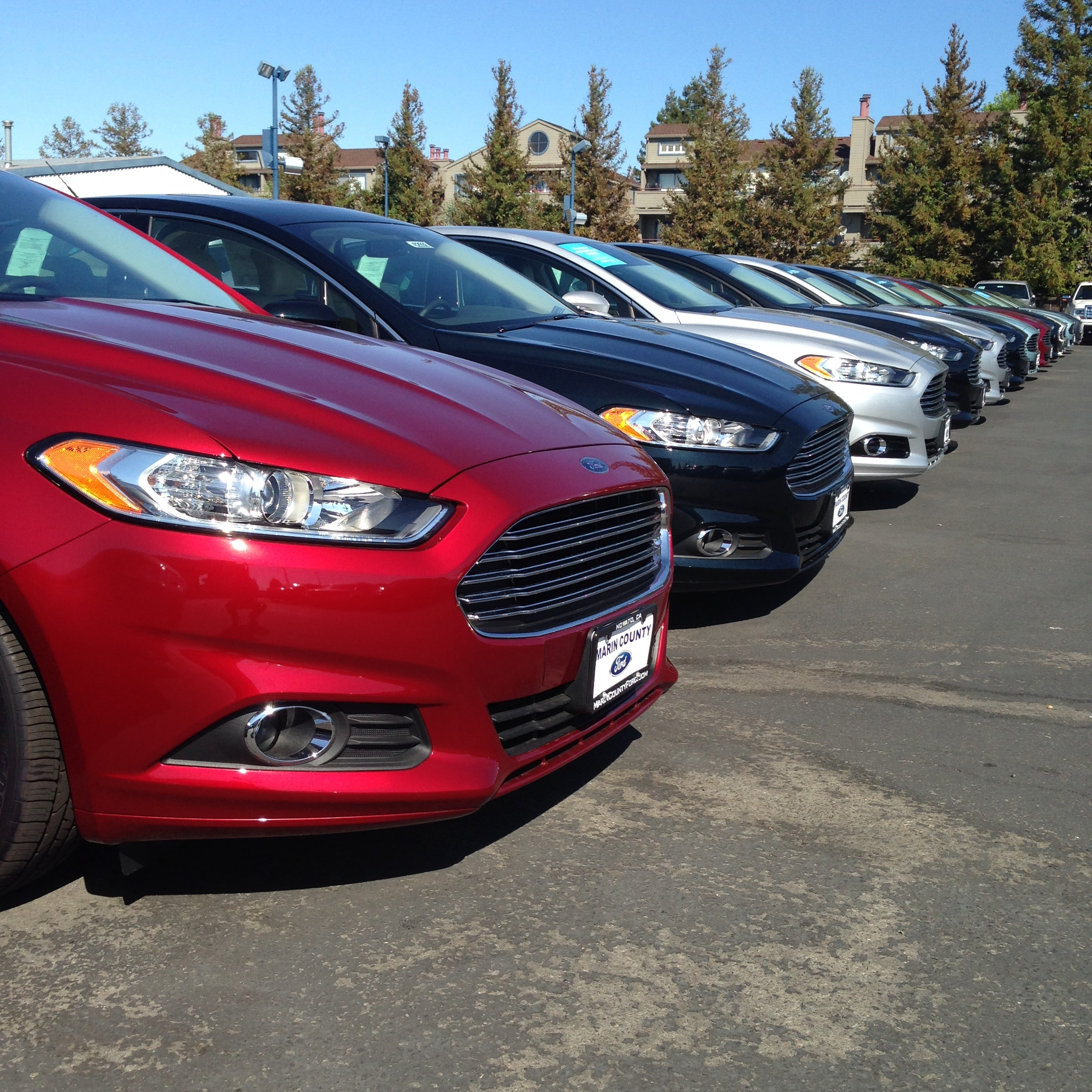 Ford Dealerships Los Angeles: Ford Dealership San Rafael Ca