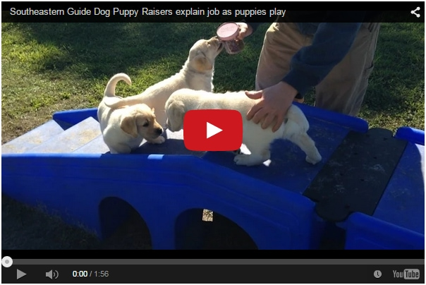 Southeastern Guide Dogs and Mastro Subaru of Tampa