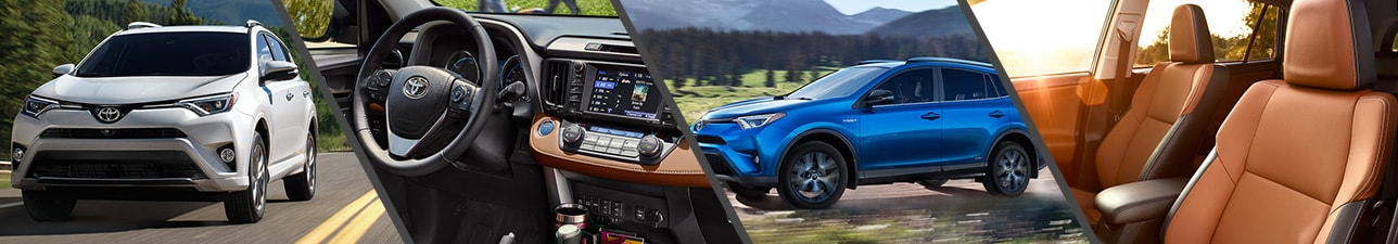 New 2017 Toyota RAV4 for Sale | Kalamazoo MI