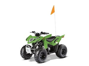 2017 ARCTIC CAT DVX 90 Automatic st:13051