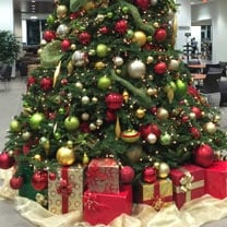 Christmas Tree toy drive | For a great selection of new and used Toyota vehicles, visit Northridge Toyota. Whether you're looking to buy or lease, we will have a Toyota just for you.