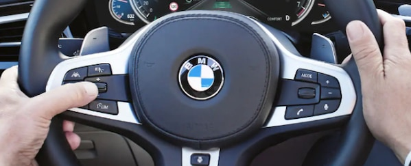 BMW Safe Assistant Plus