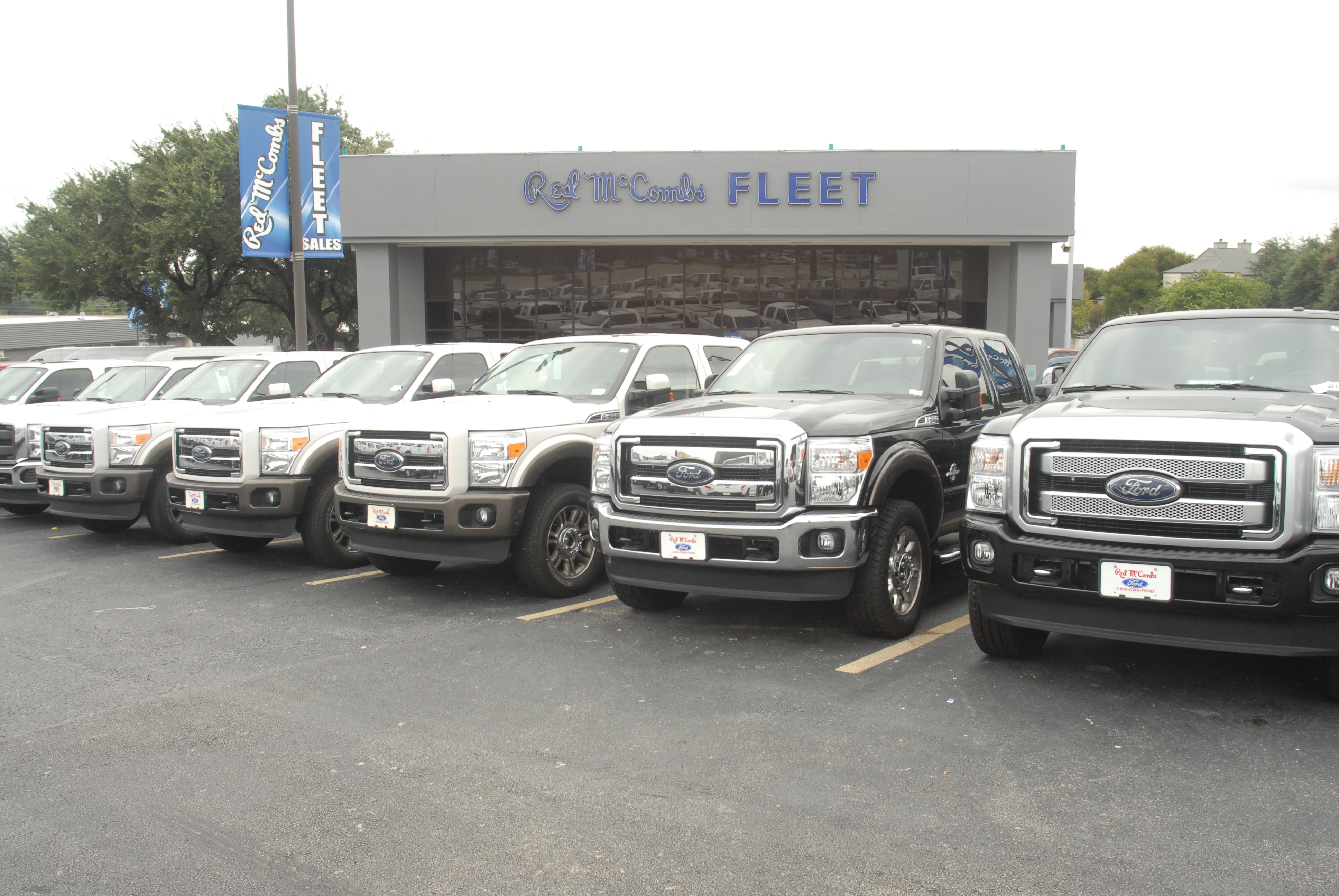 Tampa Ford Truck Dealers Best Image Truck Kusaboshi