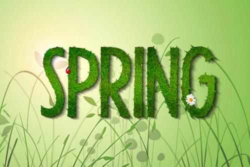 Spring Lawn Care Tips | Roseville Chrysler Dodge Jeep RAM In Roseville