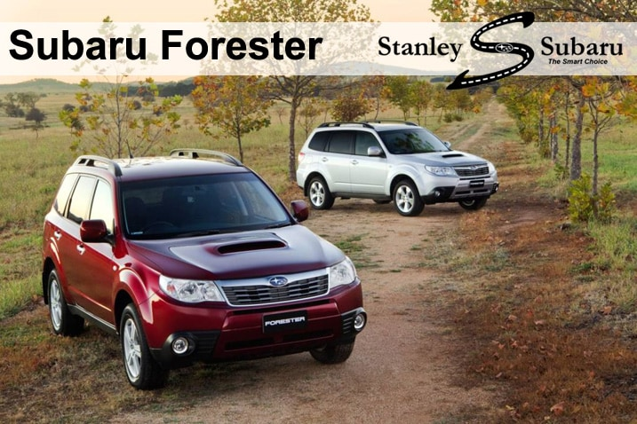 differences between the forester and outback the forester uses