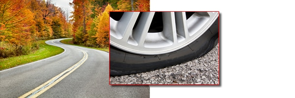 Road Hazard Tire Protection