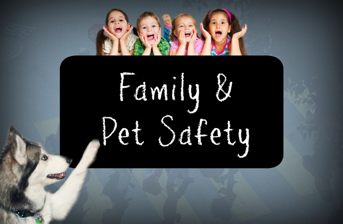 Clermont Toyota safety for pets