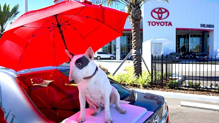 New Toyota in Orlando