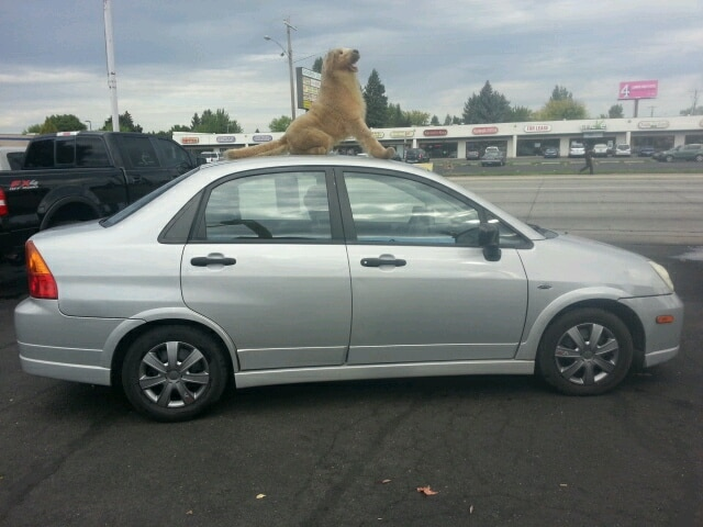 2003 Suzuki Aerio Looking for an amazing value Heres a great deal on a 2003 S