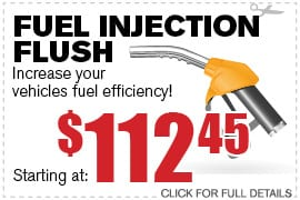 Fuel Injection Flush Service