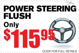 Power Steering Flush & Check Up