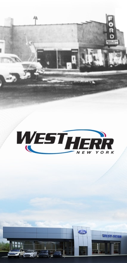 West Herr Group - Local Gay Singles