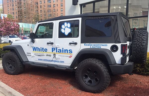 white plains chrysler jeep dodge new chrysler dodge. Black Bedroom Furniture Sets. Home Design Ideas