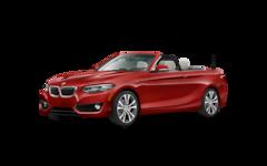 2019 BMW 230i 230i Convertible