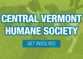 Help  Support the Central Vermont Humane Society