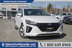 2019 Hyundai Ioniq EV Preferred