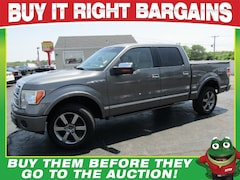 2009 Ford F-150 SuperCrew Platinum 4X4 - Heated/Cooled Leather - Tow Package Truck SuperCrew Cab