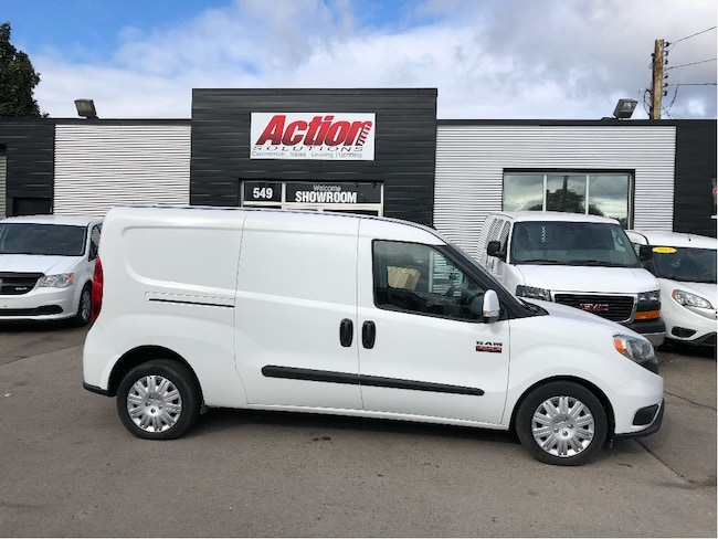 2015 Ram ProMaster City Aluminum shelving and partition!