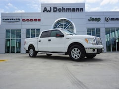 2010 Ford F-150 XLT 2WD 145WB SuperCrew