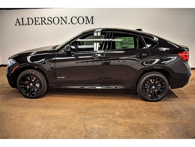 new 2019 bmw x6 for sale lease lubbock tx stock 10519. Black Bedroom Furniture Sets. Home Design Ideas