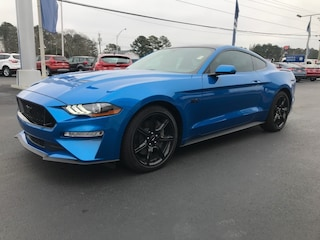 2019 Ford Mustang GT Coupe Car