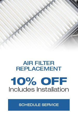 Air Filter Replacement, Includes Installation