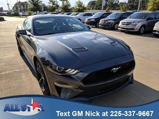 2019 Ford Mustang Ecoboost Fastback Car