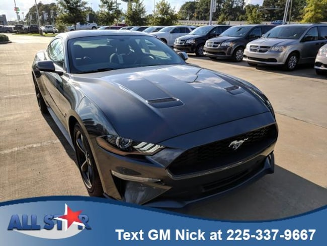 New 2019 Ford Mustang Ecoboost Fastback Car For Sale /Lease Denham Springs, Louisiana