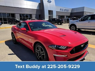 2019 Ford Mustang GT Fastback Car