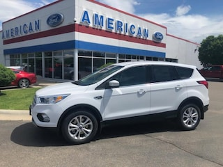2019 Ford Escape SE Wagon
